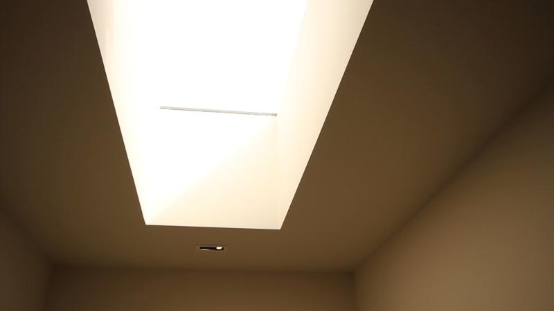 Streatham Common roof light